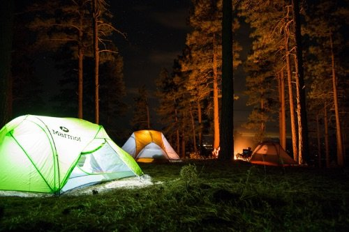 Group of tent at night in the forest woords trees